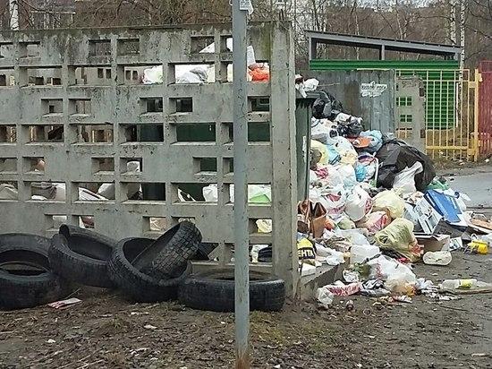 Карельских коммунальщиков оштрафовали за не вывезенный из поселка мусор