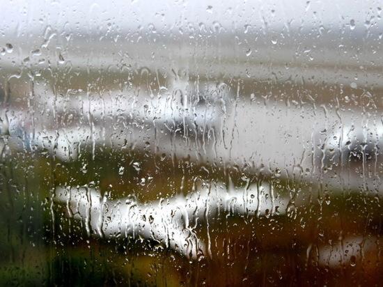 В Ульяновской области на этой неделе будет дождливо