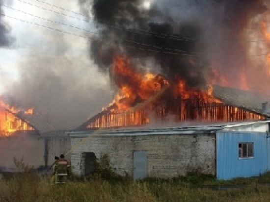 Огонь уничтожил в Мордовии зернохранилище