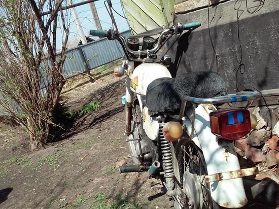В Приволжье мотоцикл съехал в кювет и опрокинулся