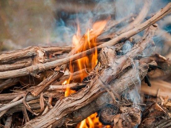 В Астраханской области горели баня и дом