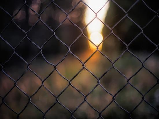 В Сапогово мужчина пытался изнасиловать 10-летнюю девочку