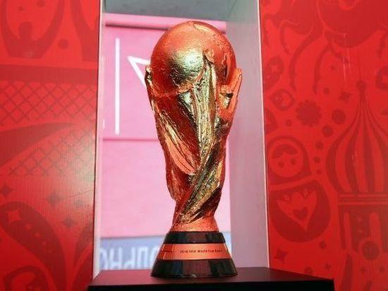 13 мая в Самару доставят официальный Кубок ЧМ-2018 FIFA