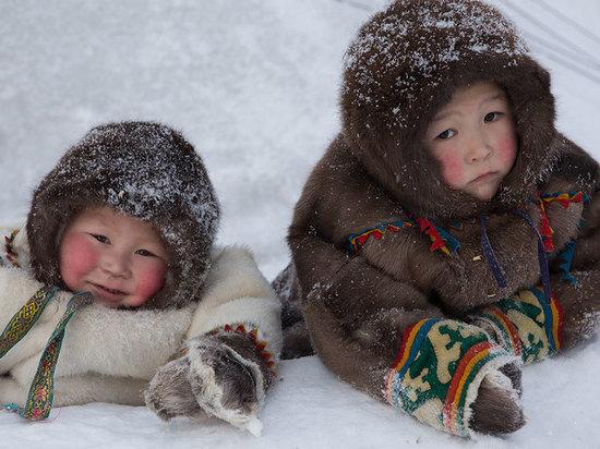 Изучение сна детей в Арктике начнётся с Архангельской области