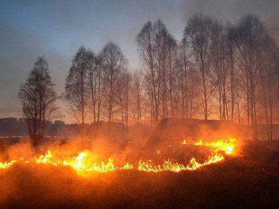 В Самарской области установили 4-й класс пожарной опасности