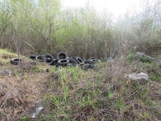 В Ульяновске на берегу Свияги устроили свалку покрышек