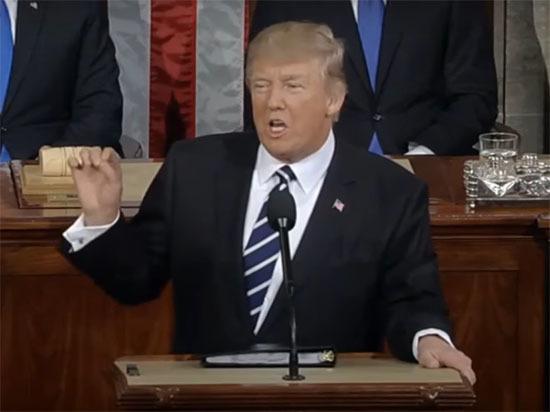 Эксперт: Трамп повел себя по наполеоновскому принципу