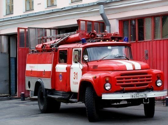 В Ульяновске огонь с сухой травы перекинулся на «шестерку»
