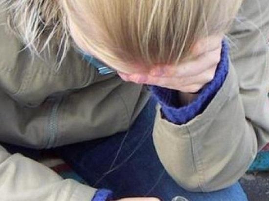 Региональный СК проведет проверку обстоятельств изъятия детей в Сорочинске