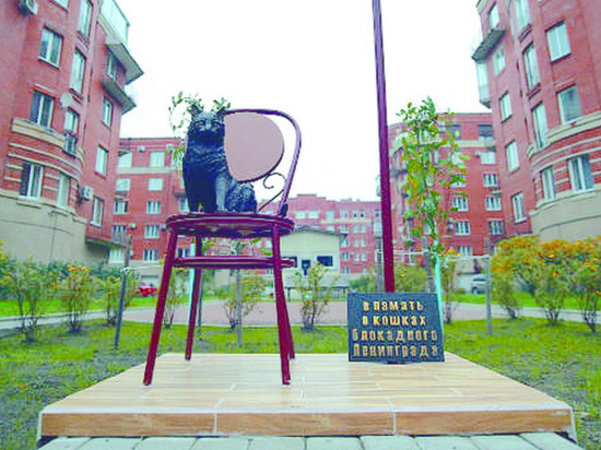 В Петербурге увековечили блокадную кошку