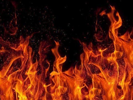 В Татарстане во время пожара на даче погиб мужчина
