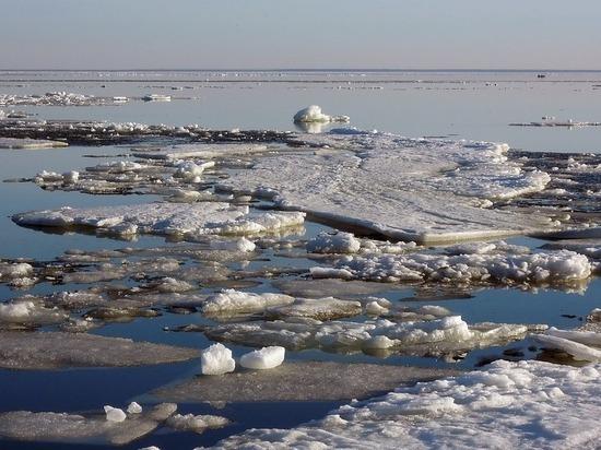 Ледоход начался на югорских реках