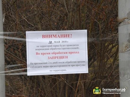 Екатеринбург начали обрабатывать от клещей