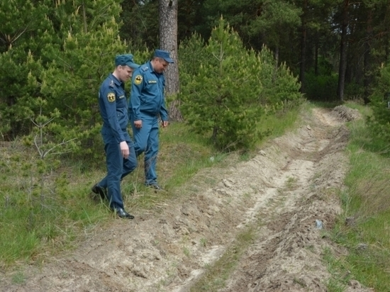 В Мордовии проводят противопожарную опашку сел