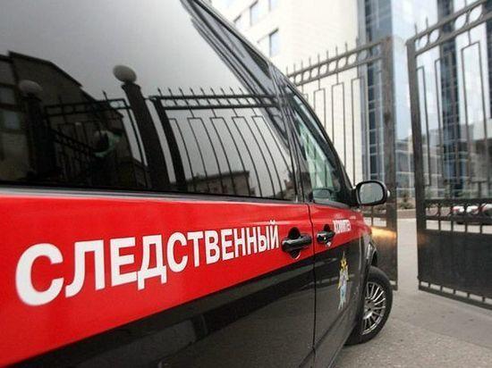 В Мордовии во время театрализованного представления петарда попала в зрителей, три человека получили ожоги