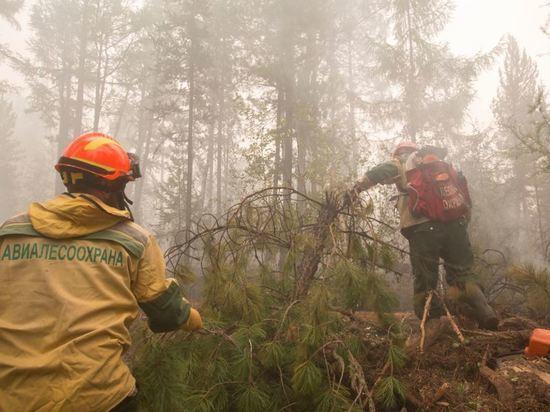 В Татарстане в мае ожидается повышенная пожароопасность