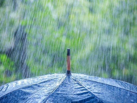 В Самарской области в пятницу возможны дождь и грозы