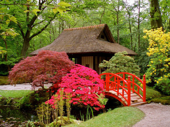 В Ульяновске заложат Японский сад