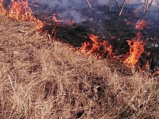 В Чувашии за текущую неделю пожарные семь раз тушили горящую траву