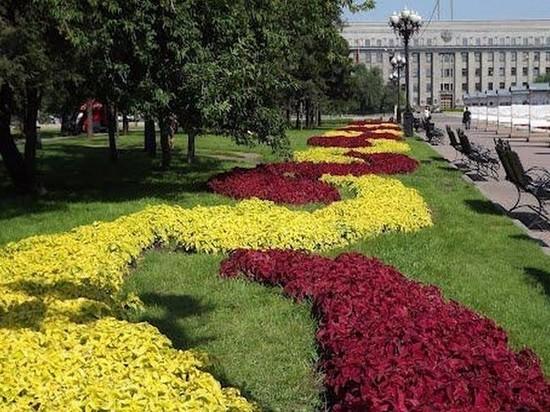 Более 700 тысяч цветов появятся на клумбах Иркутска