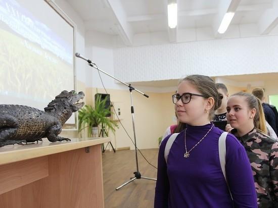 Самарские таможенники передали конфискованное чучело крокодила детям