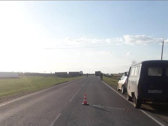 На трассе в Самарской области грузовик насмерть сбил пешехода