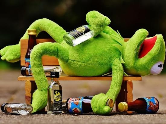 Пьяный подросток в Кондопоге напал на полицейского