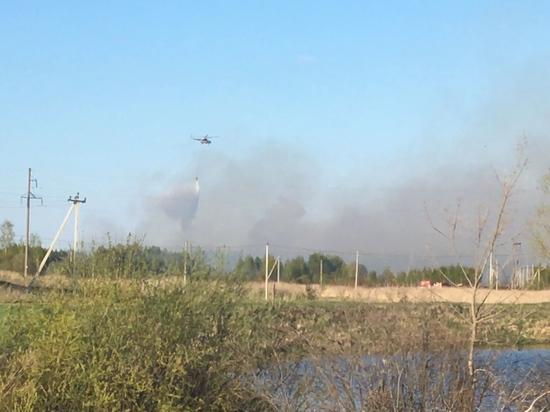 Пал сухой травы в Кстовском районе тушили с вертолета