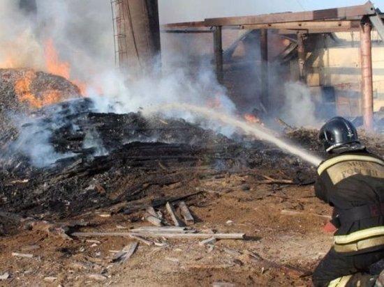 В Мордовии сгорела пилорама, пострадавших нет