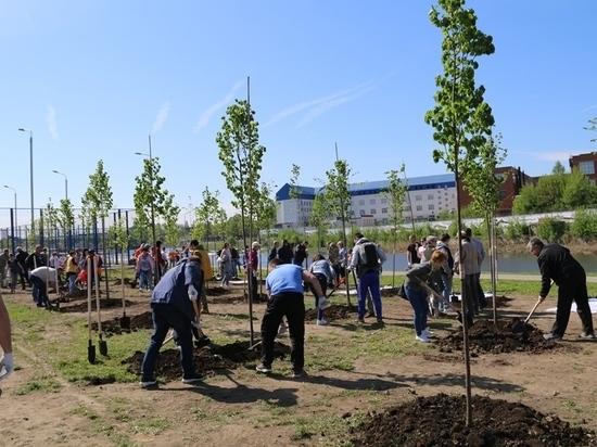 Туляки посадили деревья на тульской набережной