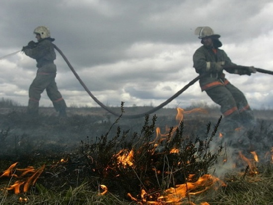 Жаркие выходные ознаменовались первым крупным травяным пожаром в Няндомском районе