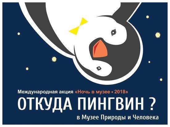 Жителей Ханты-Мансийска приглашают провести «ночь в музее»