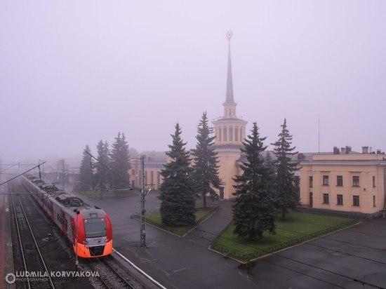 Кокаинист, вокзал, пакеты: в Петрозаводске полицейские обнаружили держателя наркотиков
