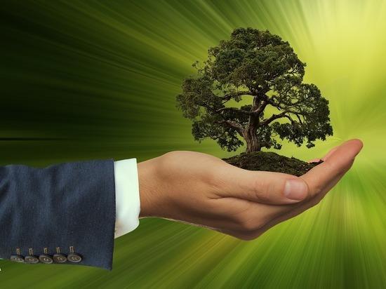 Всероссийская конференция на тему экологического образования пройдет в Югре