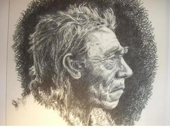 Генетики пообещали воссоздать мозг неандертальца