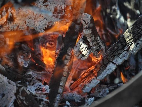 Пожилая москвичка сгорела заживо во время приготовления шашлыка