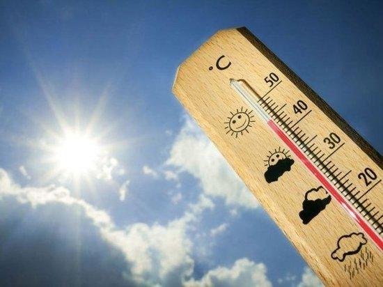 В Петербурге ожидается аномальная жара