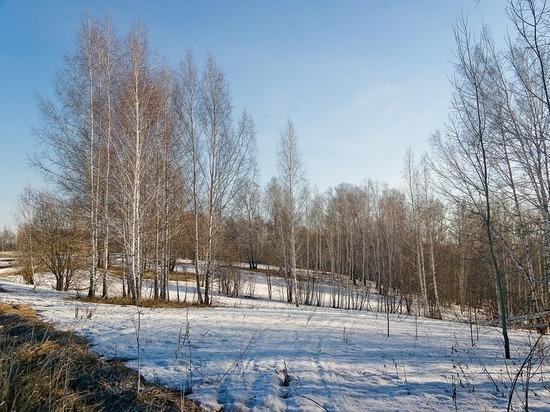 Акция «Чистый лес» стартует в Югре