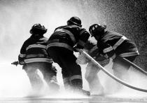 «Горели волосы»: очевидцы о пожаре в Подмосковье, где погиб мальчик