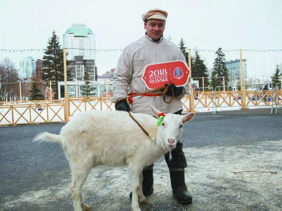 Оракул ЧМ-2018 в Самаре коза Забияка станет мультяшкой