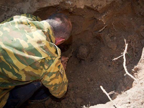 Ржевские поисковики разыскивают родственников солдата из Архангельской области