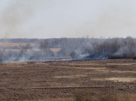 Тульские ЧП в цифрах: в апреле пожарные ежедневно тушили более 100 очагов возгораний