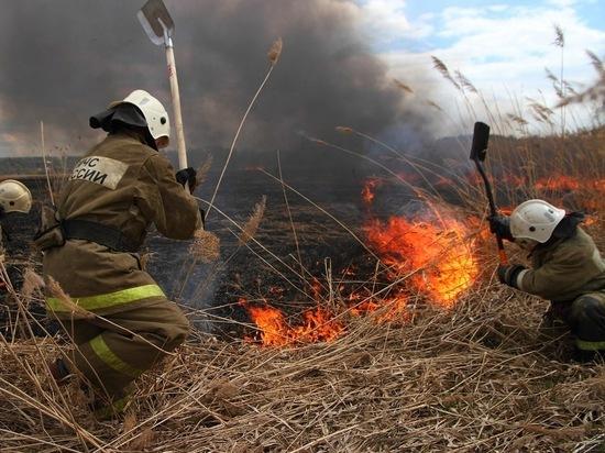 16 мая в Мордовии введен особый противопожарный режим