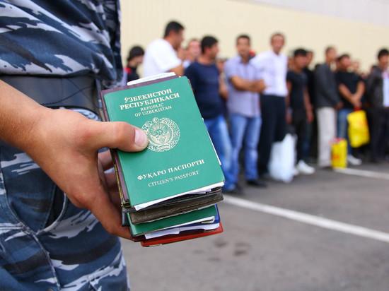 Что такое модернизация системы миграционного контроля