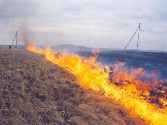 Филиал «Кировэнерго» готов к пожароопасному периоду