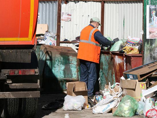 Губернатор потребовал решить проблему с вывозом мусора в Тамбове