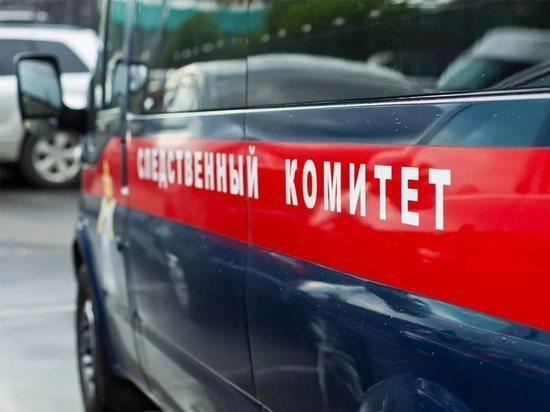 64-летний житель Тверской области надругался над малолетними девочками