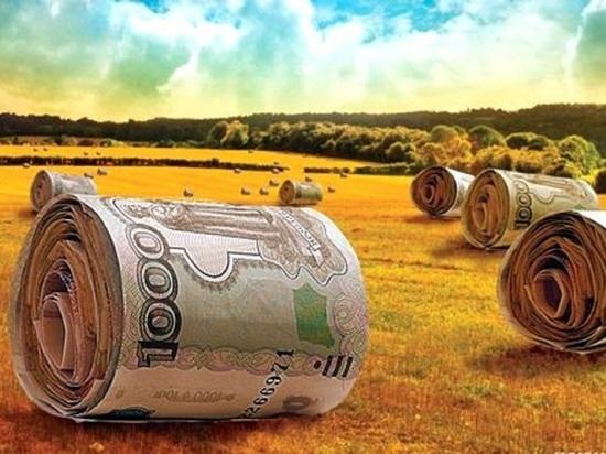 Ивановских аграриев заваливают деньгами: региону дали 2,4 миллиарда рублей на поддержку сельхозпроизводителей