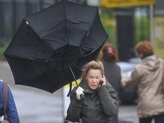 Новосибирские спасатели обнародовали штормовое предупреждение