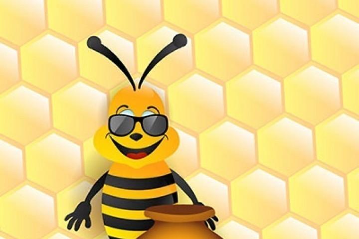 Сам, картинки с пчелами смешные
